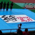 2014J2vs栃木SC(第32節)